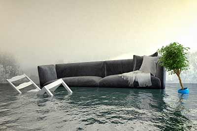 Warum Mussen Sie Ihr Haus Trockenlegen Lassen Ratgeber Trockenlegung