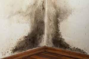 Hervorragend Schimmel durch feuchte Mauern - Leben Sie gesund in Ihrem Haus? ND44